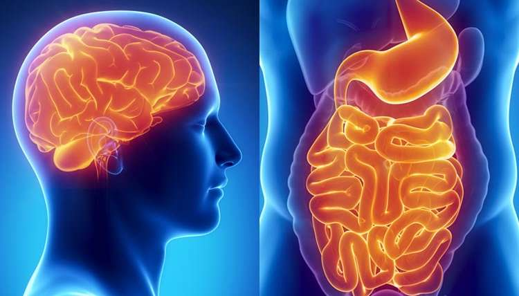 4 Ways Leaky Gut Affects Your Mind