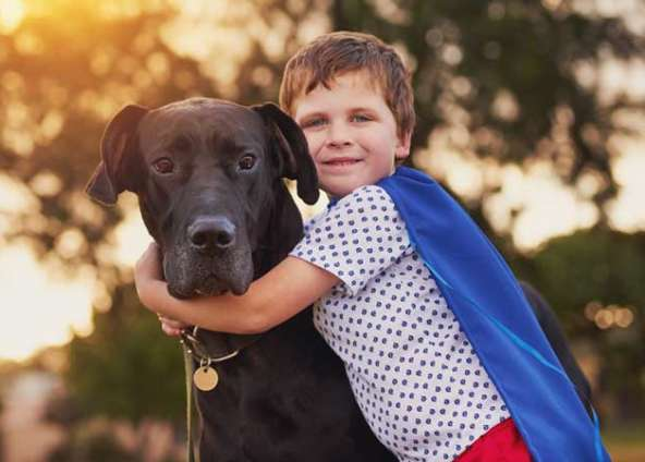 Waldo's Wisdom: Why Having A Pet Teaches Your Child Empathy